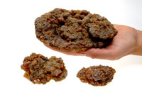Myrrhe Somalia grosse Stücke